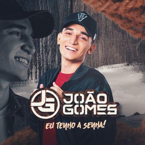Download CD João Gomes - Eu Tenho a Senha (2021)